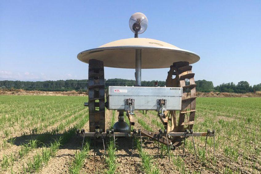 Moondino rice paddy robot for autonomous weeding
