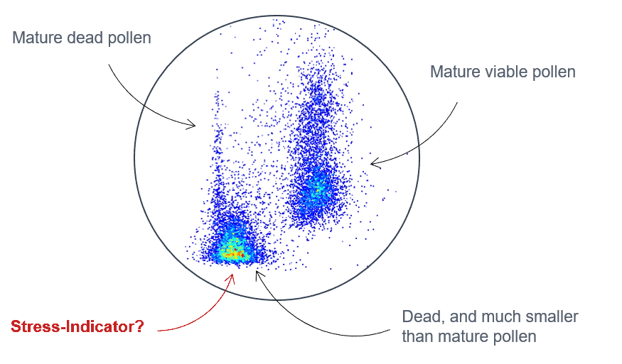 Scatterplot showing mature viable, mature dead and aberrant tomato cells