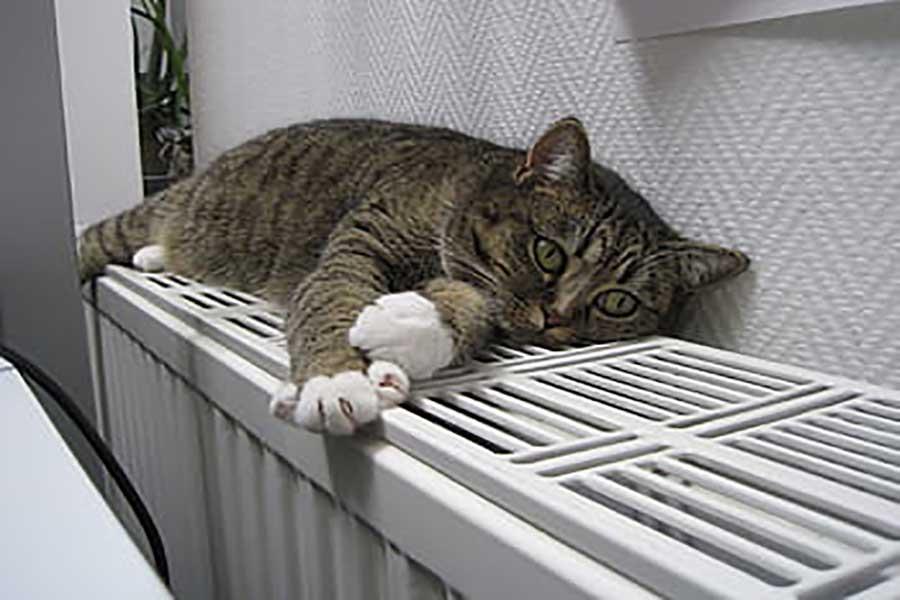 Técnico de reparación de calderas en aluche