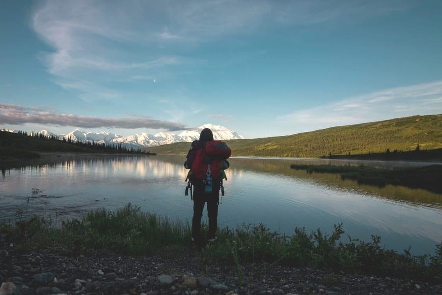 man looking at the Denali National Park