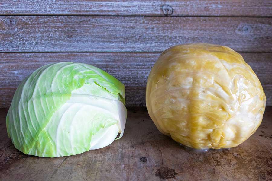 cabbage and sauerkraut