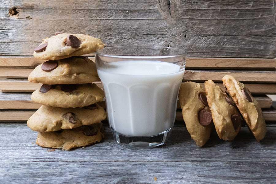 grain-free chocolate chip cookie