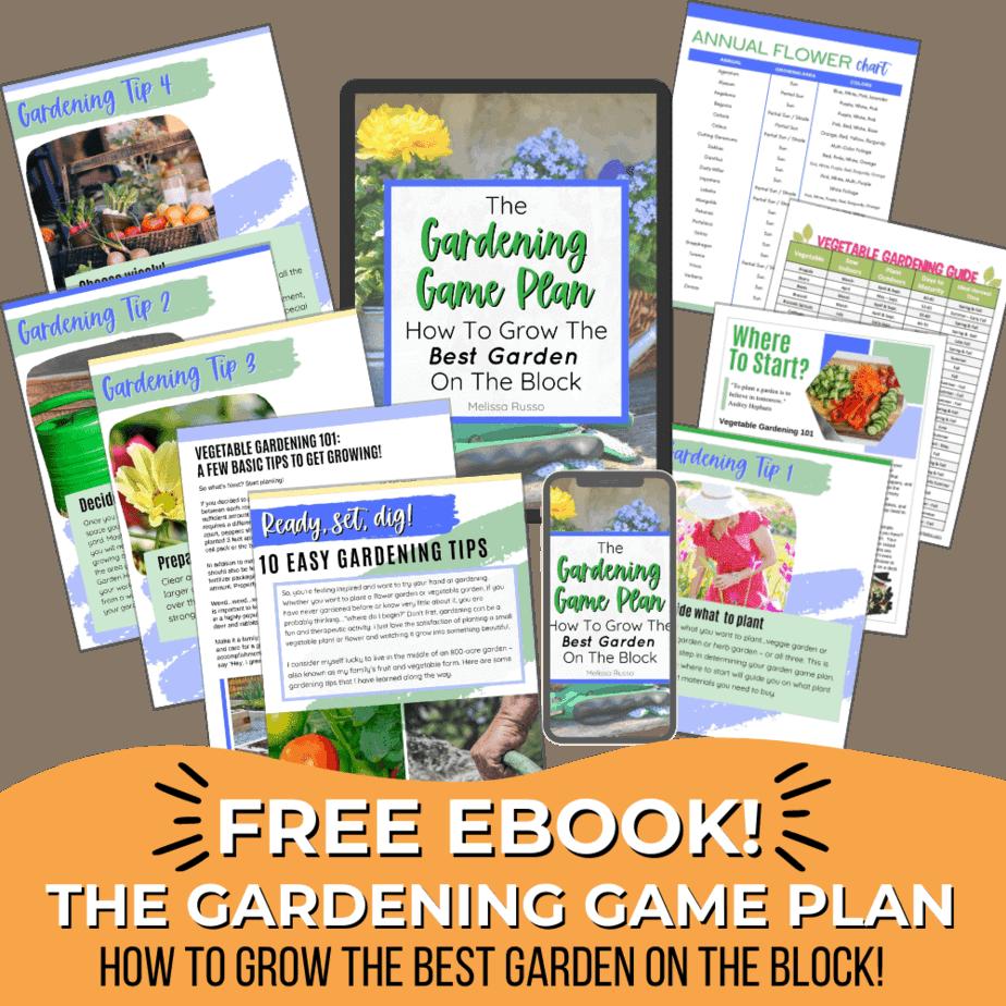 Gardening for beginners ebook