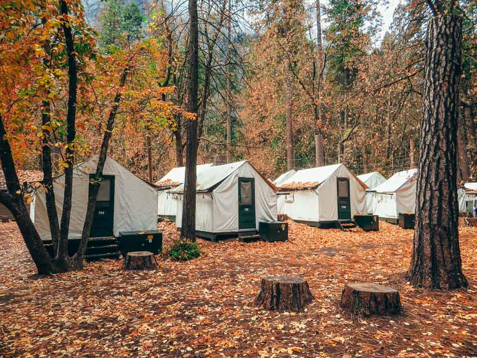 Glamping tents in Curry Village, Yosemite National Park, California.