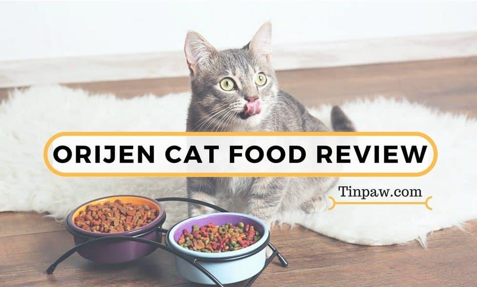 Orijen Cat Food Review-