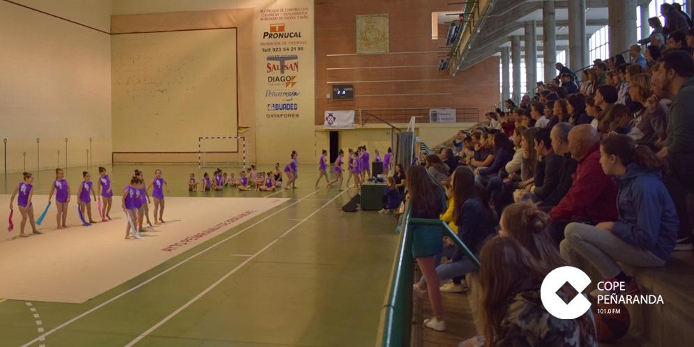 Las gimnastas de la Escuela municipal protagonizaron una exhibición.