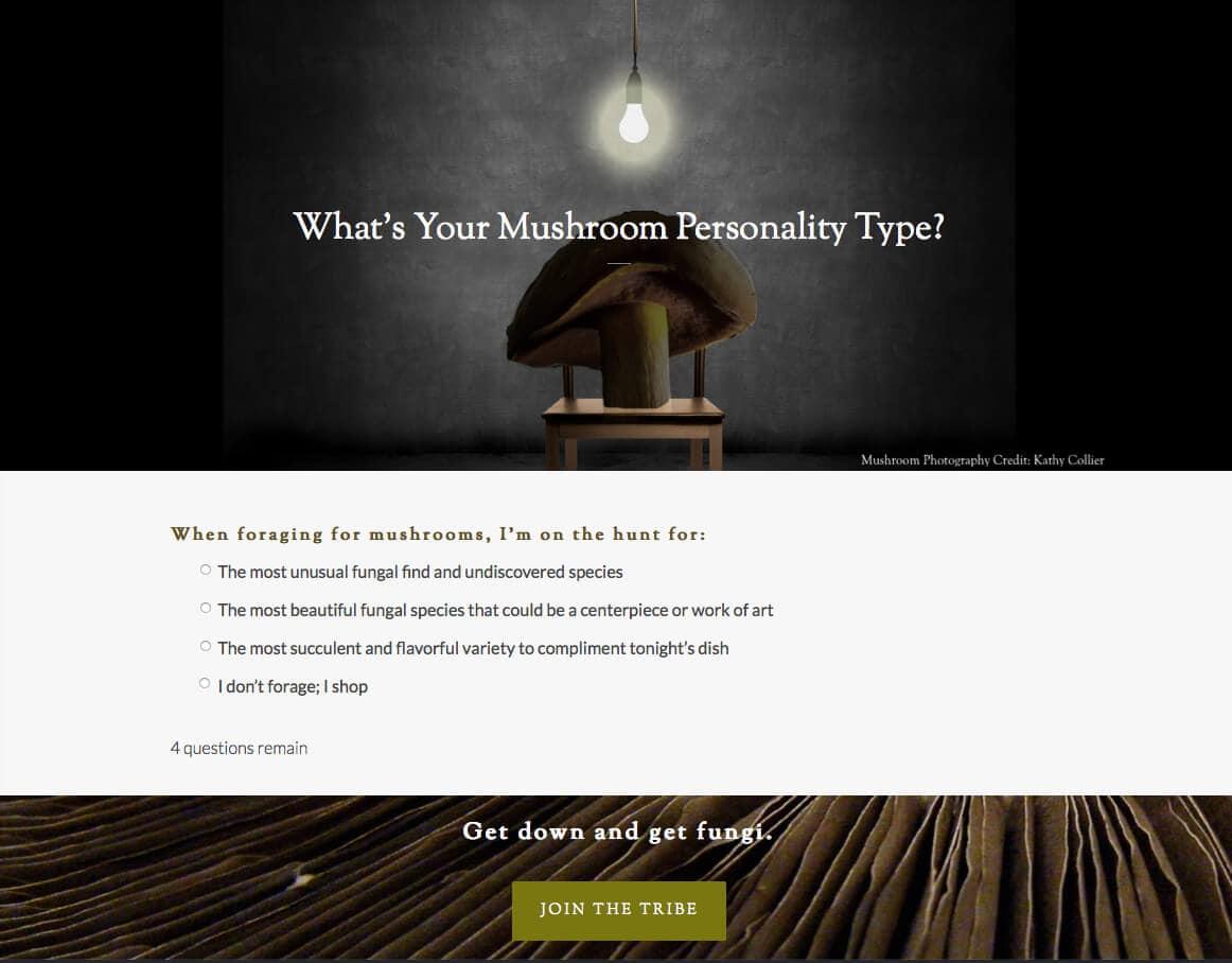 Fantastic Fungi Mushroom Personality Quiz