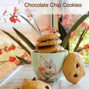 Grain-Free Almond Butter Chocolate Chip Cookies