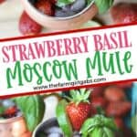 This simple Strawberry Basil Moscow Mule is a refreshing drink recipe. Grab your copper mugs and make this easy cocktail recipe.