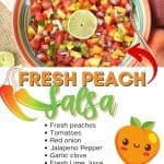 Spice up your summer with this tastyPeach Pico de Gallo recipe. Grab those fresh peaches and whip up a bowl to snack on. This peach salsa recipe is so easy to make. Serve this homemade salsa recipe with chips or top on your favorite chicken recipe, fish recipe, or seafood dish.