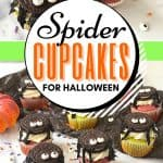 Oreo Spider Cupcakes for Halloween are a tasty treat that kids will love eating and making. The colorful and cute cupcakes are sure to be a huge hit at Halloween gatherings, birthday parties and fall activities with family and friends. The best part yet, this Halloween-inspired cupcake recipe is topped with an Oreo cookie spider.
