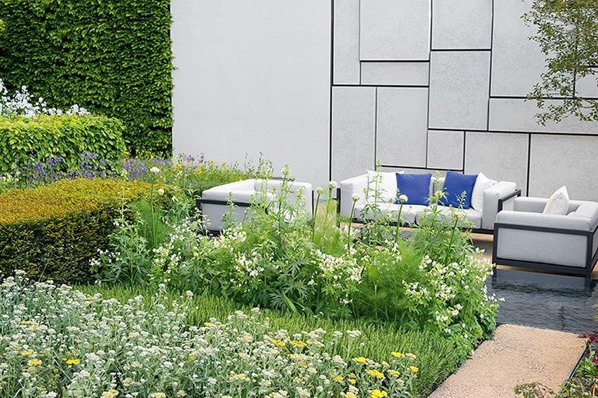 N1005444_140-Carpinus-hornbeam-hedge-formal-modern-courtyard-garden