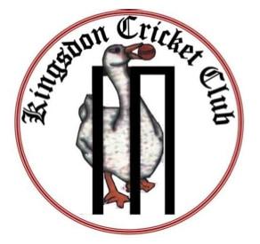 Cricket club logo