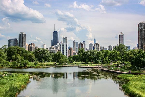 Illinois pest control