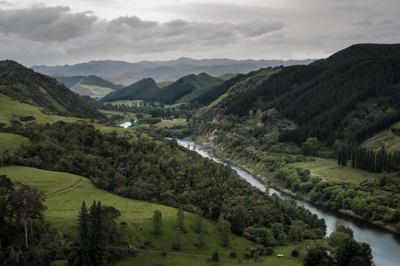 Fluss fliesst durch Waldlandschaft im Whanganui National Park
