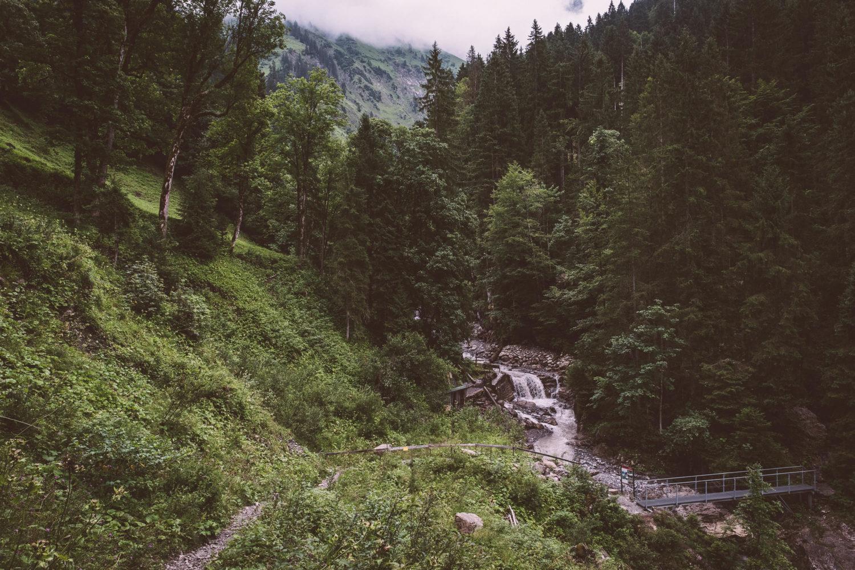 Waldweg mit Bachlauf