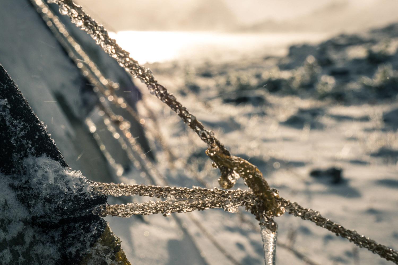 Zugefrorenes Abspannseil eines Zelts