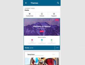 themes wp app 300x229 - themes-wp-app