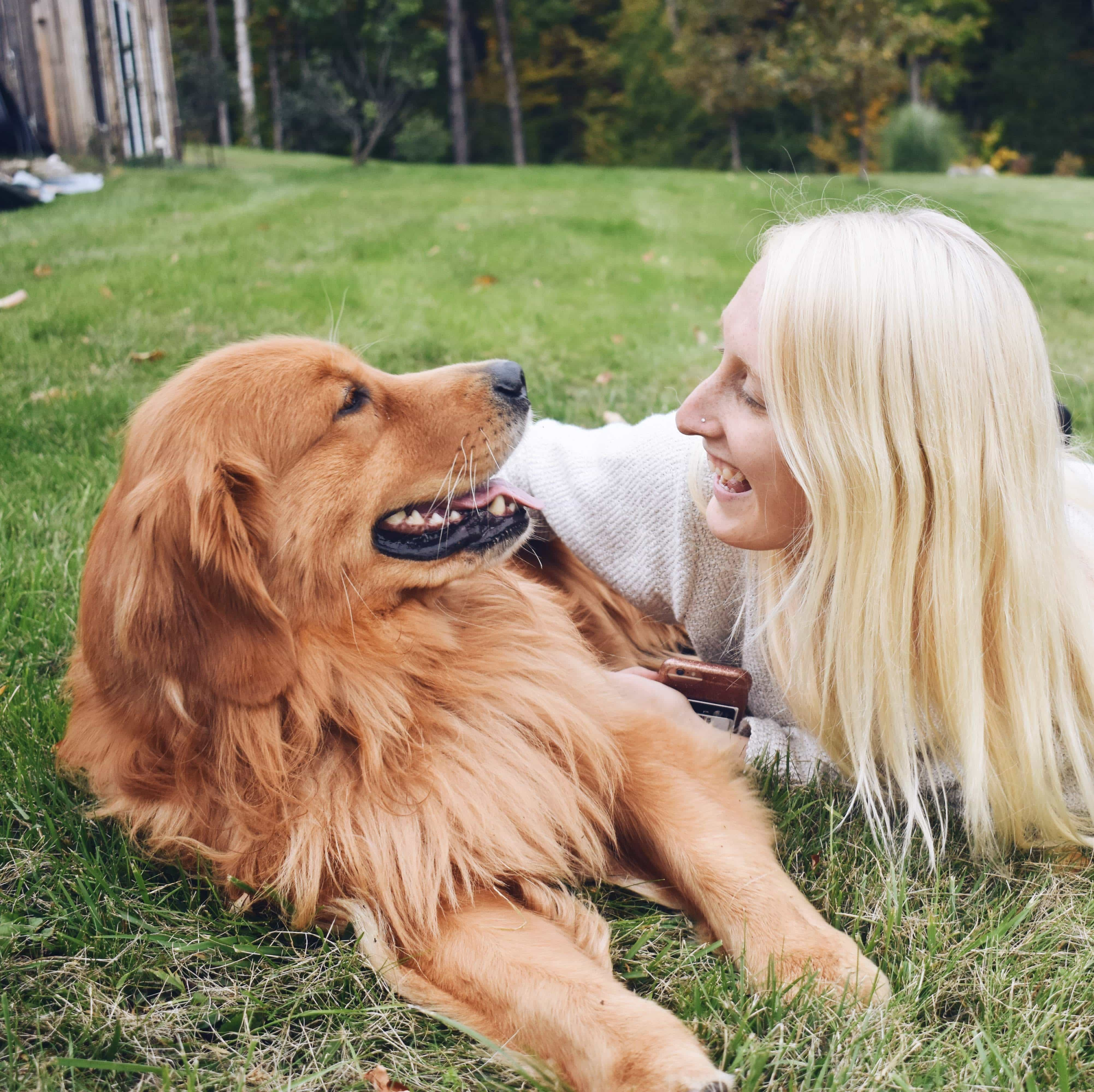 sarah-dwyer-dog
