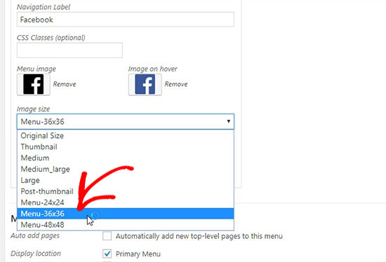 اضافه کردن آیکون شبکه های اجتماعی به منوهای وردپرس