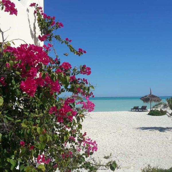 resort Miramano Logde madagascar