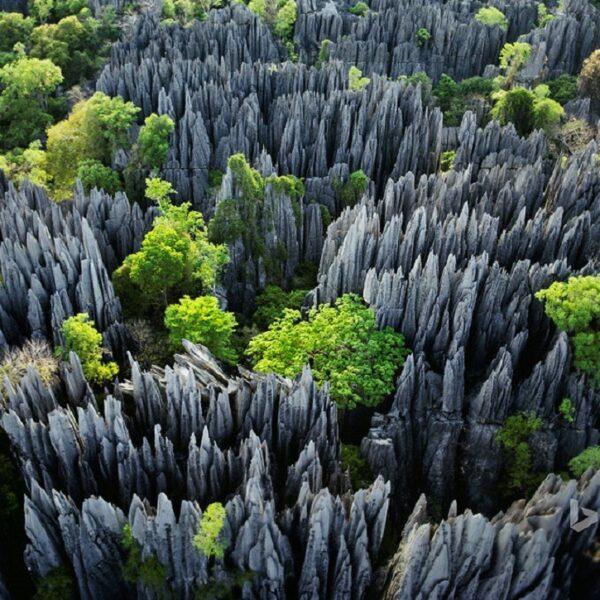 vista aerea del parco degli tsingy di Bemaraha in Madagascar