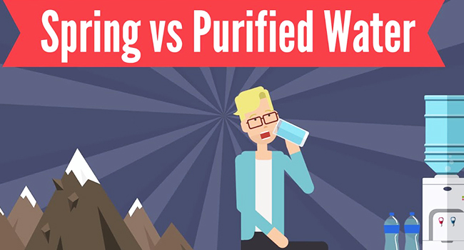 Spring Water vs. Purified Water: Why Springwater Better for Drinking?