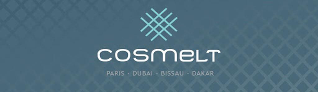 COSMELT PROJECT MANAGEMENT LLC
