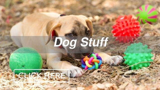 Dog Stuff Category