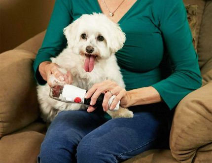 Paw Perfect Nail Trimmer Review