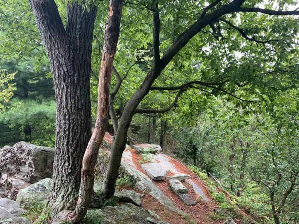 standing stone trail empty top