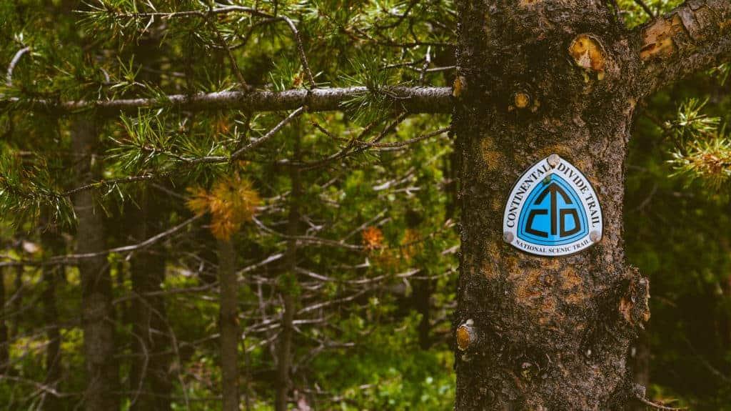 blue CDT sign on a tree