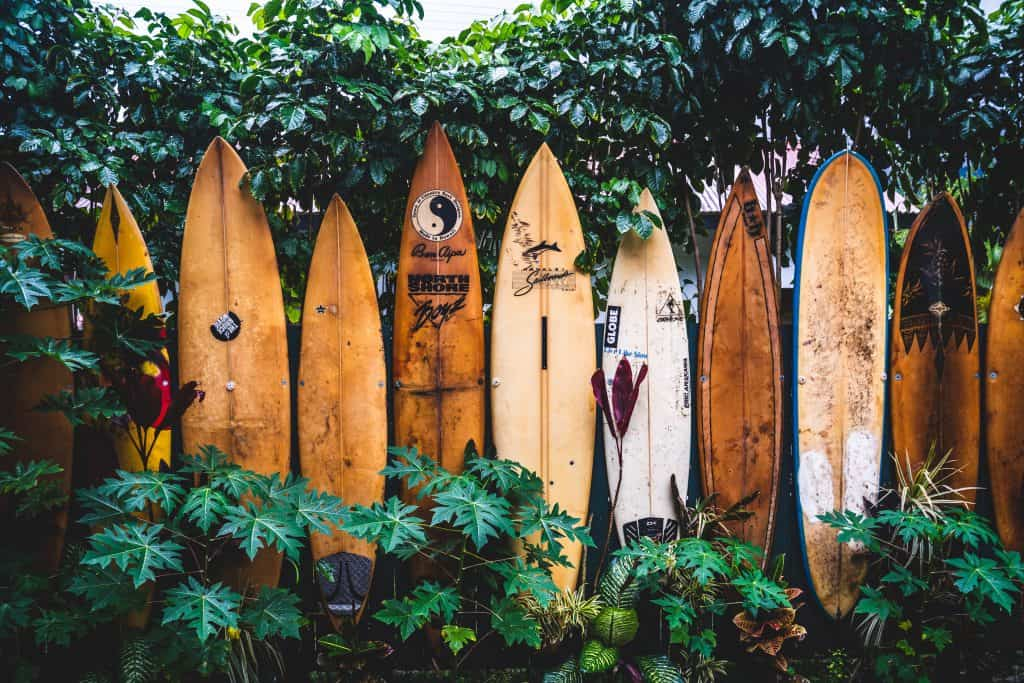 dakine-hawai