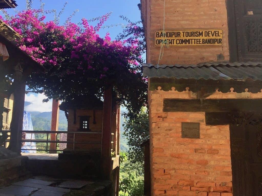 Blumen in Bandipur, Nepal