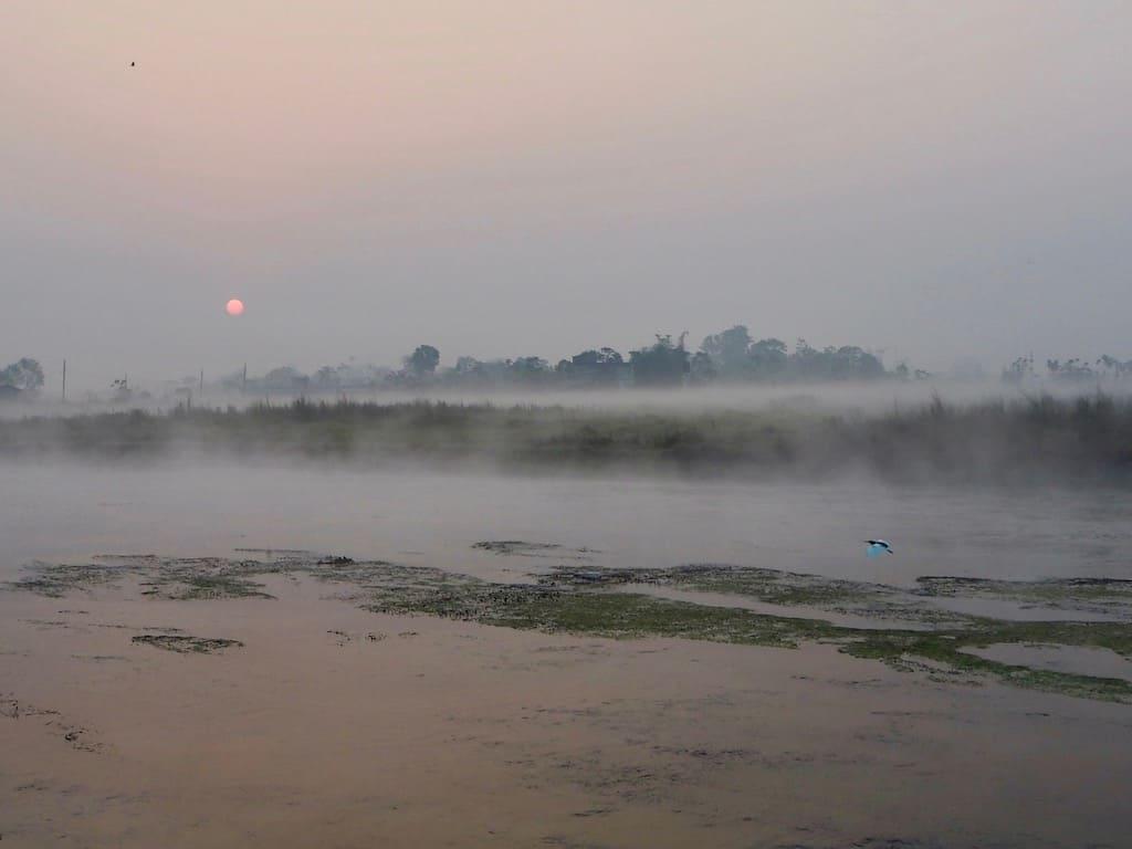 Morgens im Chitwan Nationalpark