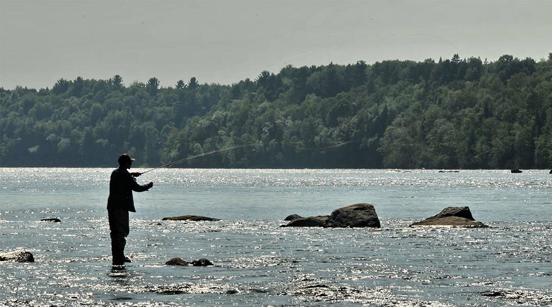 Camping Lac-Saint-Michel offre des activités de pêche pour toute la famille