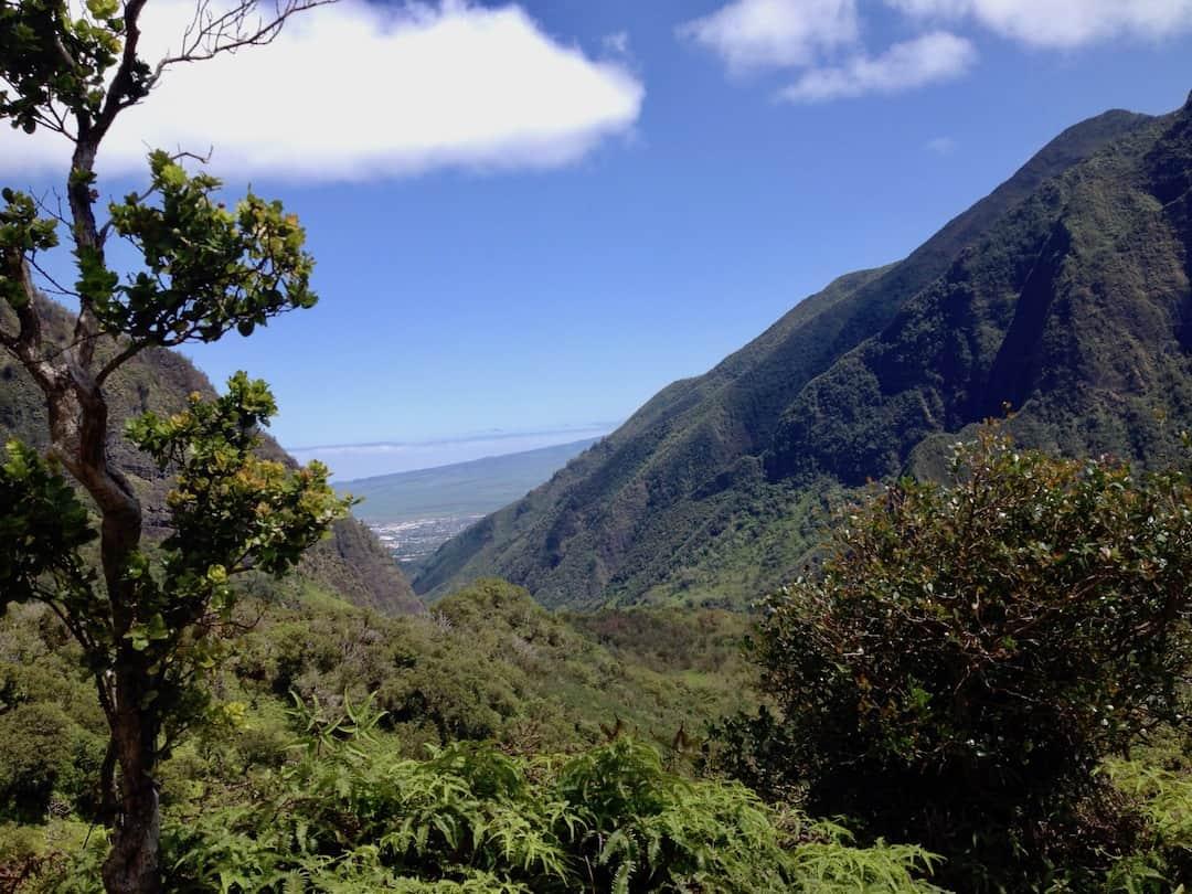 Wandern-auf-Maui