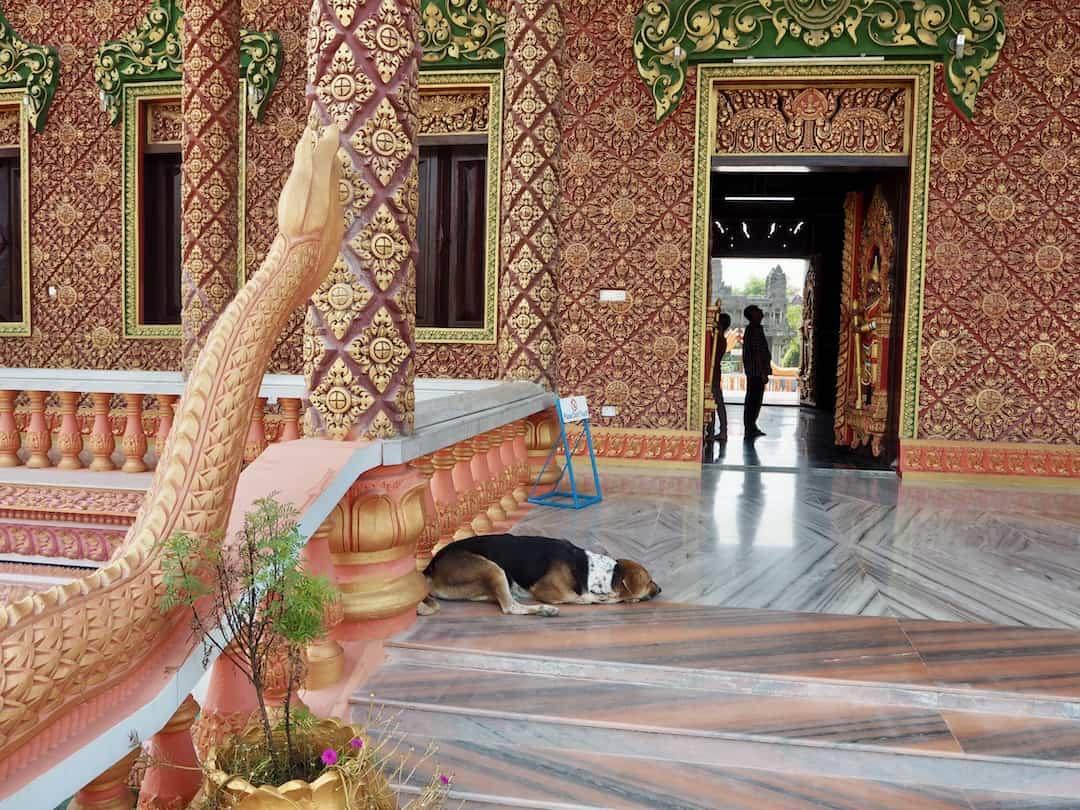 Tempel von Kambodscha