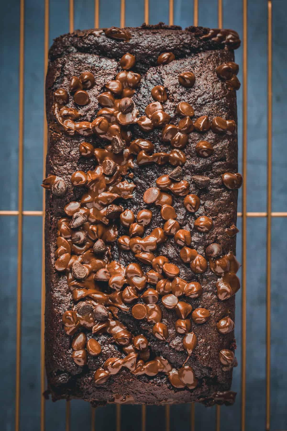 A chocolate loaf cake made with plain flour.