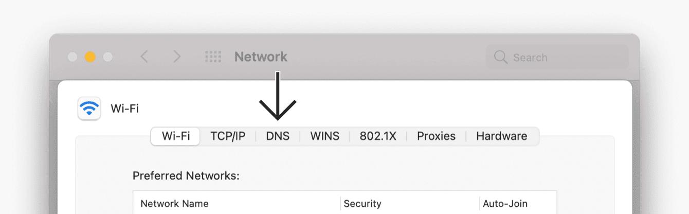 """Click """"DNS."""""""