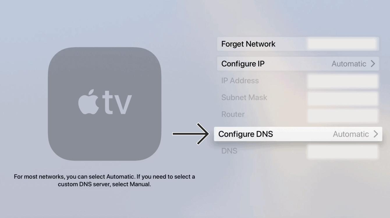 """Select """"Configure DNS."""""""