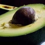Avocado Oil Hair Benefits