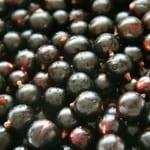 Black Currant Oil for Hair