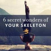 Skeleton secret wonders