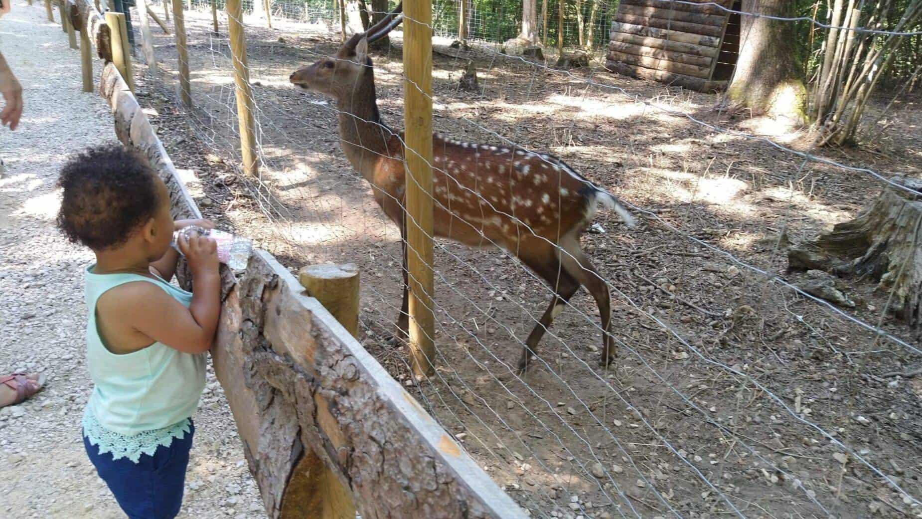 Toerisme Ariège Kinderen Pret Ferme du Paradis