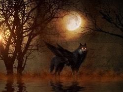 de wolf en de drie biggetjes