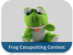 Frog Catapulting Team Building