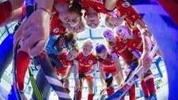 MHC TV – Viertelfinale – MHC vs. Wespen – 19.01.2019 14:00 h