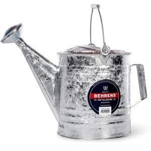Behrens Silver 210