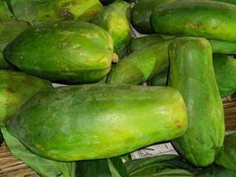 Green papayas